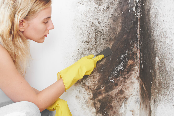 A woman with yellow rubber gloves trying to clean mold from the basement wall.